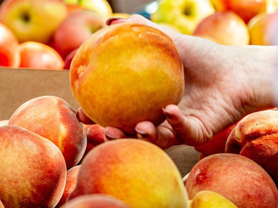 Почти просроченную еду раздадут нищим: депутаты нашли решение продовольственной проблемы