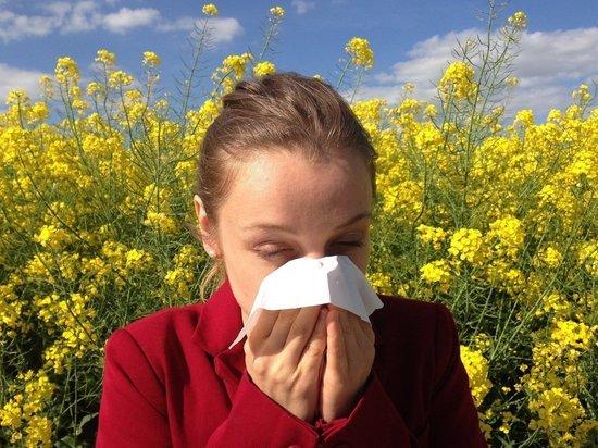 Сезон аллергии наступит в Москве раньше срока