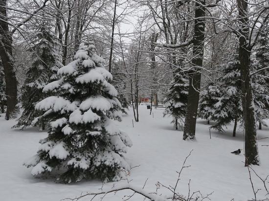В первой половине дня в Саратовской области будет идти снег