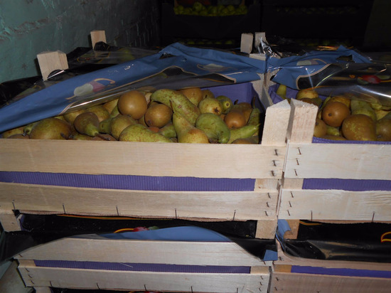 В Кирове уничтожили 600 кг груш