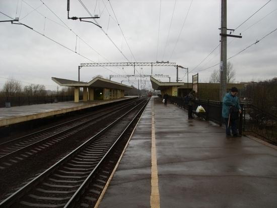 Житель Лужского района выжил, попав под поезд