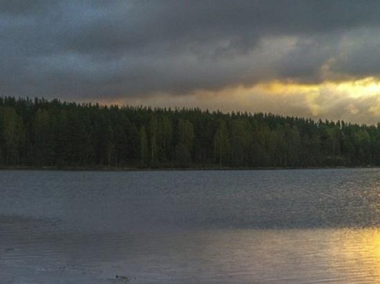 В Тверской области из озера достали труп пенсионера