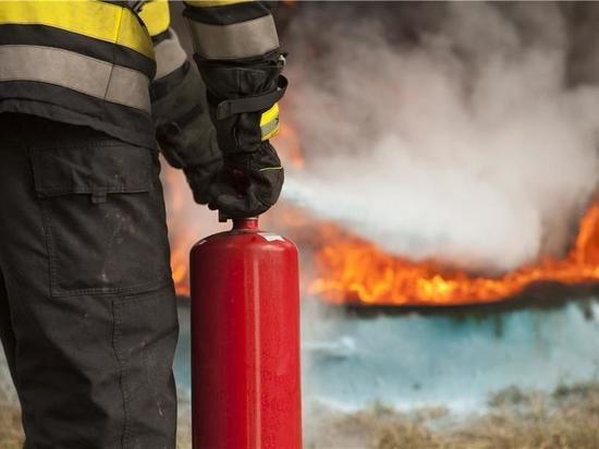 Сегодня ночью в Ивановской области сгорели баня и автомобиль