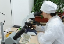 По ДНК преступника раскрыли разбой в Волгоградской области