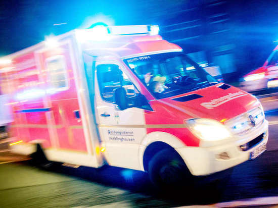 В Баварии в огне погибли более 130 животных