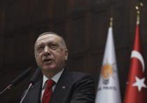 Эксперт оценил слова Эрдогана о роли России: будет жестче