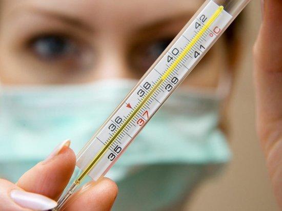 В Архангельской области отменили массовые мероприятия из-за гриппа
