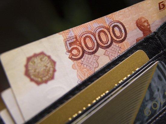 Уголовную отвественность за невыплату зарплаты предложили отменить