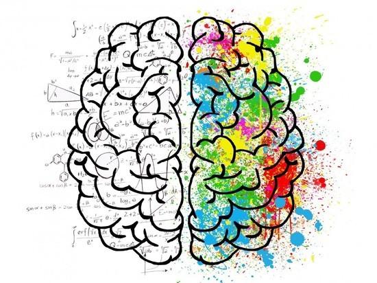 Ученые выявили связь железа с когнитивными возможностями человека