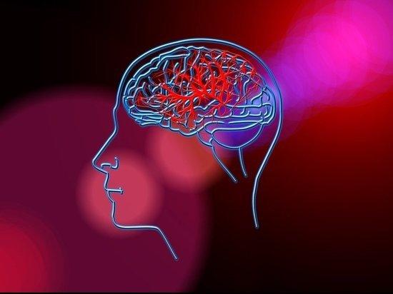 Ученые обнаружили способ быстрого восстановления мозга после инсульта
