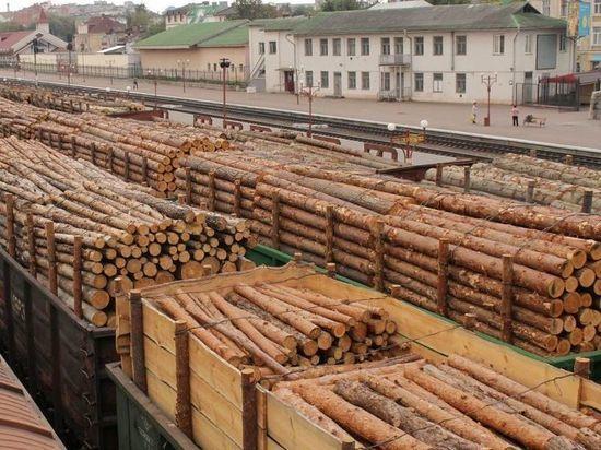 Забайкалка отделалась условным сроком за вывоз леса в КНР на 13 млн руб