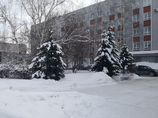Общественники создали петицию против строительства корпуса АлтГУ