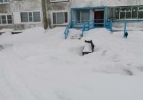 В Лабытнанги УК напрочь забыла об уборке во дворе