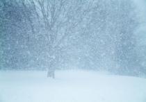 Оренбуржцев предупреждают о штормовом ветре и снегопаде