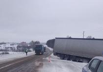 В Челябинской области в метель фура вылетела с трассы