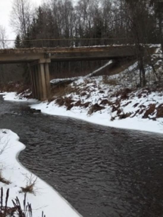 В реке в Тверской области нашли тело неизвестного мужчины
