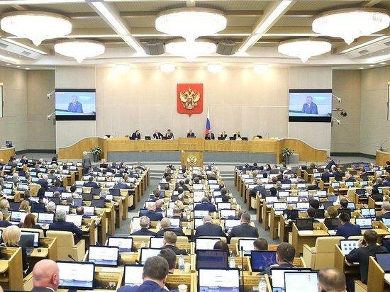 Госдума приняла поправки в закон о маткапитале