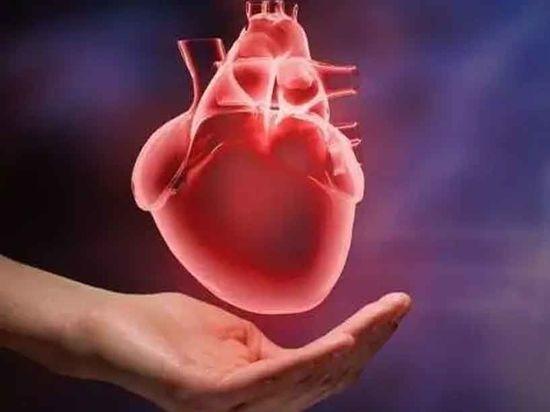 Рак и инфаркты: Облстат рассказал от чего умирают ярославцы