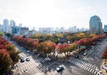 Коронавирус пошел в наступление на Корейский полуостров