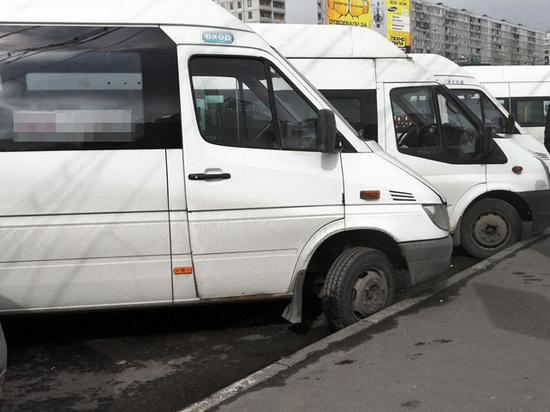 Пассажирка маршрутки, которую высадили в сугроб, засудила автопарк