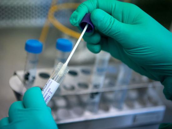 Тверитянам рассказали, как провести отпуск и не заразиться коронавирусом