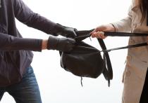 Грабитель в Шилке отобрал сумку у женщины и разорвал ее паспорт
