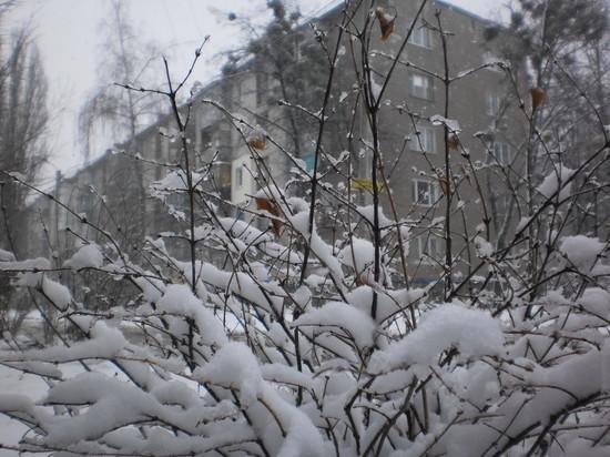 Снежный циклон, пришедший в Ивановскую область холодов не принесет