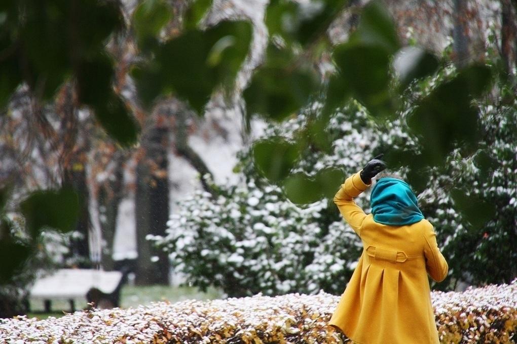 Москвичей предупредили о снеге с дождем и барической пиле