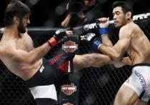 Россияне побили американцев в UFC и Bellator: главное в ММА за неделю