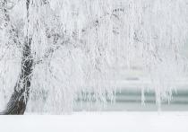 Остаток февраля в Кирове будет снежным и пасмурным
