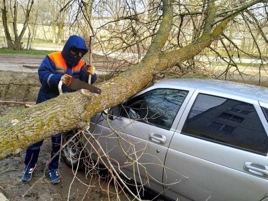 В калмыцкой столице от штормового ветра пострадали… автомобили