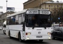 Каждый будний день в Санкт-Петербург приезжает на работу примерно 440 тысяч жителей Ленинградской области