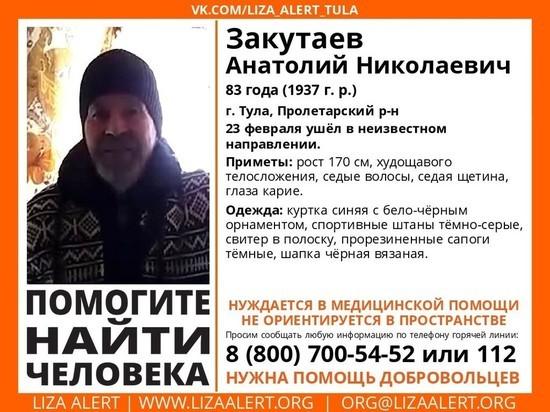 В Туле ищут 83-летнего мужчину