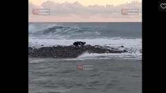 Двух восьмиклассников в Сочи смыло в море