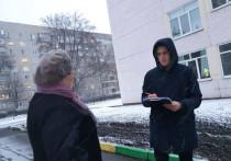 Половина тамбовчан высоко оценила качество уборки снега возле школ