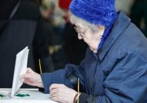 Рабочая группа по внесению поправок в Конституцию постановила, что «для подготовки и проведения общероссийского голосования могут быть использованы: портал госуслуг, многофункциональные центры предоставления государственных и муниципальных услуг (МФЦ), дистанционное электронное голосование»