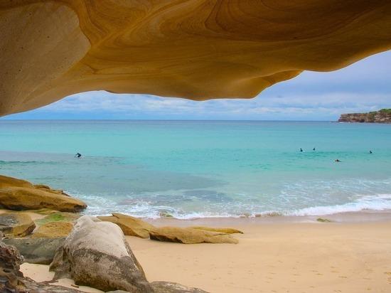 """На австралийском пляже нашли загадочного """"убийцу собак"""""""