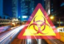 Коронавирус в Германии: Эксперты прогнозируют до 70 процентов инфицированных