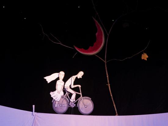 Девять кукольных театров покажут в Тамбове свои спектакли