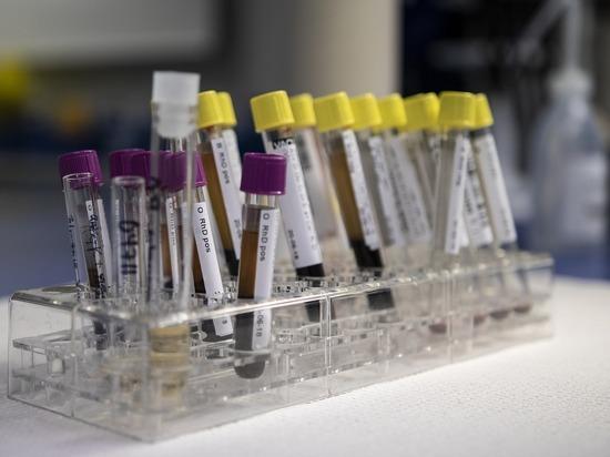 Ученый поведал о новом открытии: способность помнить передается через кровь