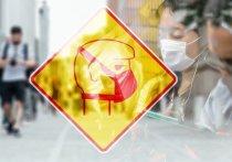 Коронавирус: права работников в Германии. В каком случае можно оставаться дома