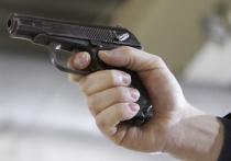 Применить служебное оружие сразу в двух случаях при задержании преступников были вынуждены московские полицейские