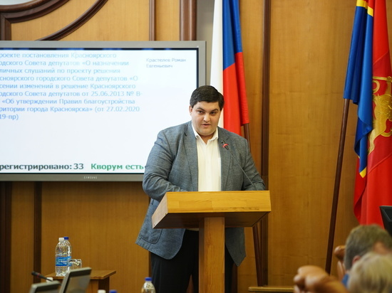 Красноярские депутаты просят федеральных денег на бездомных животных