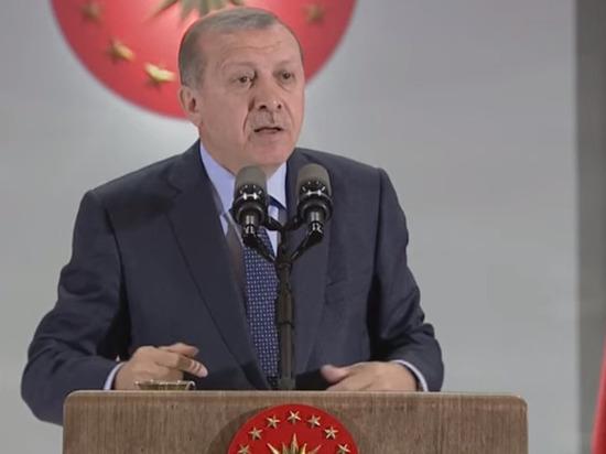 Эрдоган попросил у США поддержку для операции в Сирии