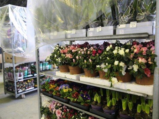 Более 100 тонн цветов доставили в Хабаровск
