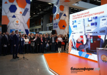 В Башкирии начала работать крупнейшая в России солнечная электростанция