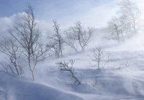 Шквалистый ветер ожидается в Новом Уренгое и Ноябрьске 5 марта