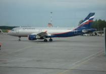 «Заминированый» самолет произвел посадку в Омске