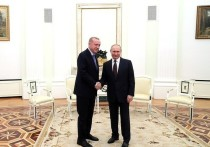 Эрдоган анонсировал введение режима прекращения огня в Сирии