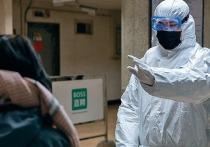 Экономику Санкт-Петербурга тормозит коронавирус